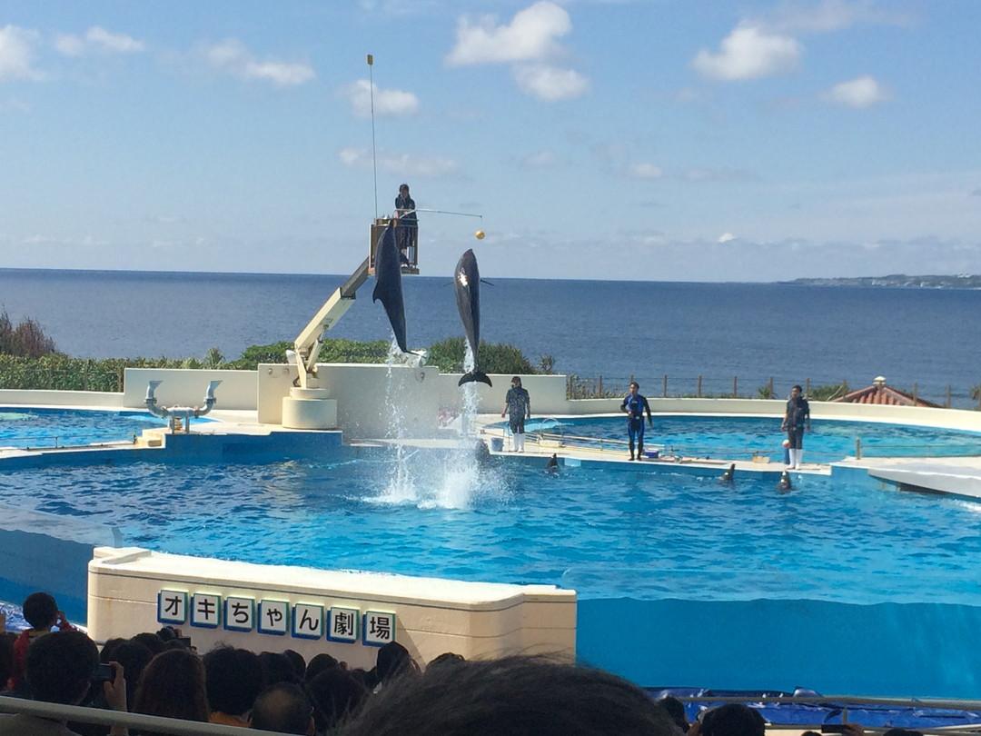 GW企画「沖縄をバーチャルで旅する クイズツアー」4日目